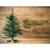 Christmas Tree Recycling 2019