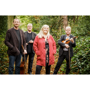 A night for Irish Trad Music Enthusiasts at Pavilion Theatre Dun Laoghaire