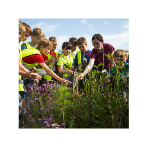 Explorers Science Camp at the Airfield Estate